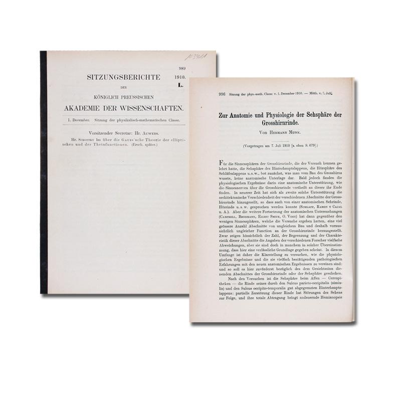 Bild von Artikel 103411-01